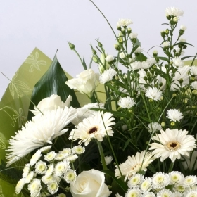 Florist Choice Sympathy Flowers